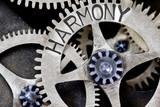 Harmonie in het lichaam